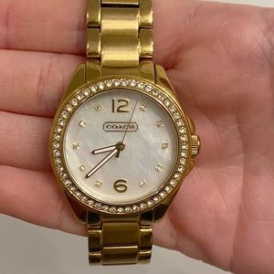 Coach Tristen Crystal Stainless Steel Watch
